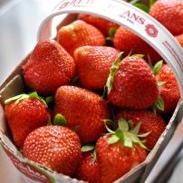 Strawberries Île d'Orleans - Québec City