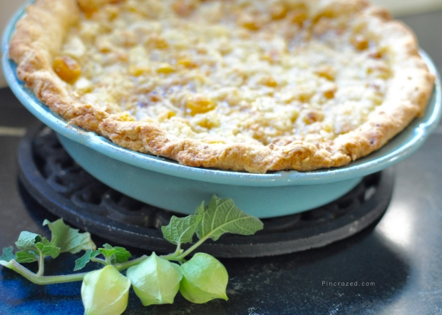 ground-cherry-pie-with-ground-cherries